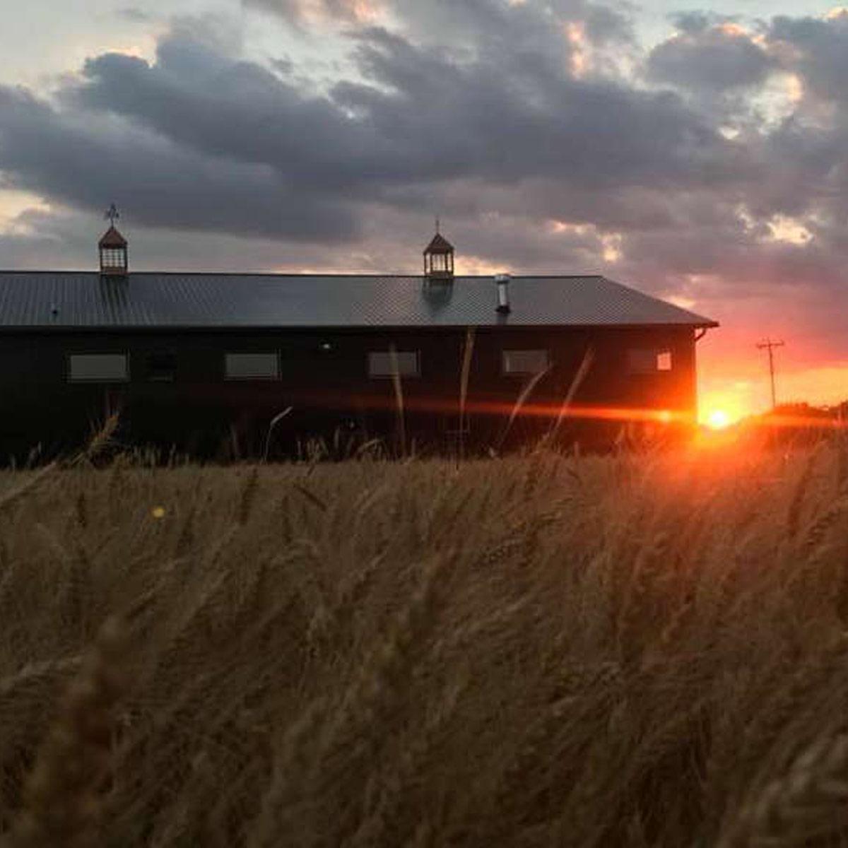 Ledgerock Distillery – Distilling a Dream